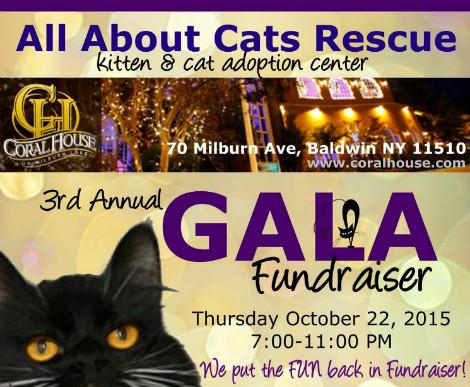3rd Annual Gala Fundraiser